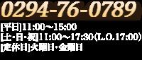 0294-76-0789